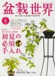 盆栽世界 2016年6月号