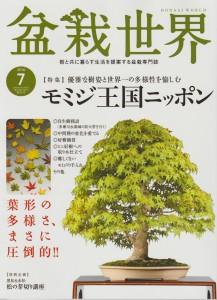 盆栽世界 2016年7月号