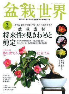 盆栽世界 2017年3月号