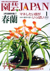 園芸JAPAN 2018年1月号