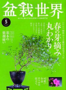 盆栽世界 2019年5月号