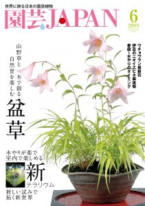 園芸JAPAN 2019年6月号