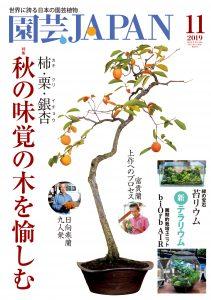 園芸JAPAN 2019年11月号