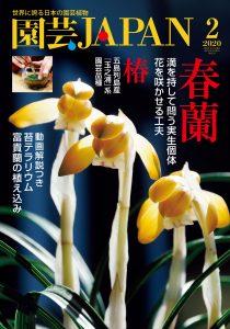 園芸JAPAN 2020年2月号