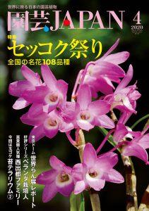 園芸JAPAN 2020年4月号
