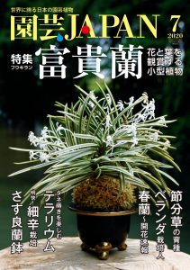 園芸JAPAN 2020年7月号