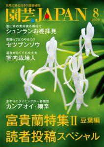 園芸JAPAN 2020年8月号