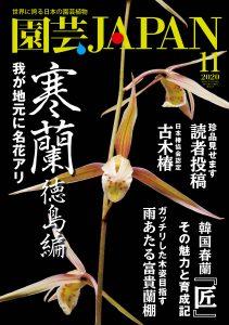 園芸JAPAN 2020年11月号