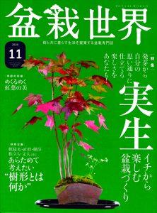 盆栽世界 2020年11月号