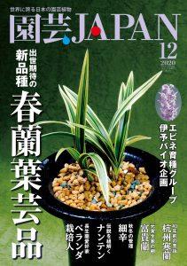 園芸JAPAN 2020年12月号