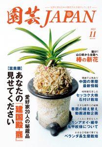 園芸JAPAN 2021年11月号